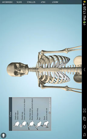 Anatomy 3D Pro – Anatronica Android