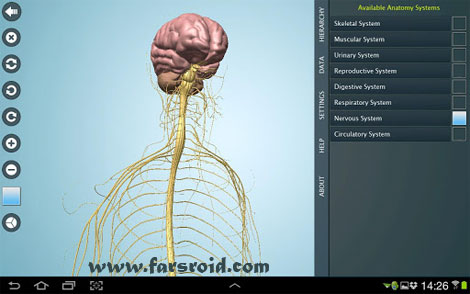 Download Anatomy 3D Pro – Anatronica Android