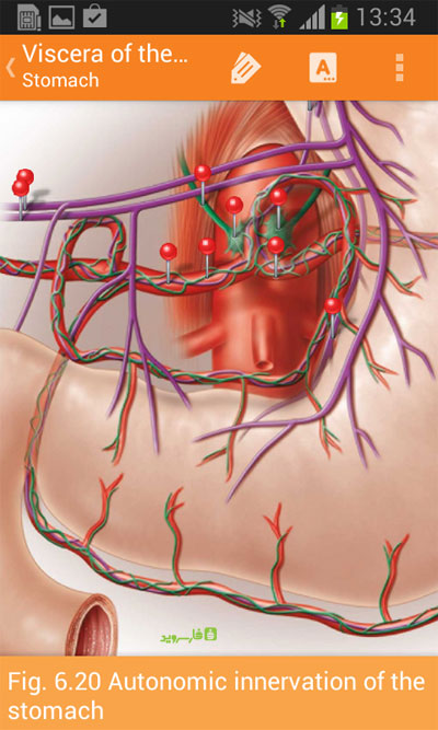 Download Sobotta Anatomy Atlas Android Unlocked Apk + Obb SD - Google Play